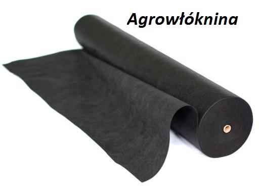 Agrotkanina czarna