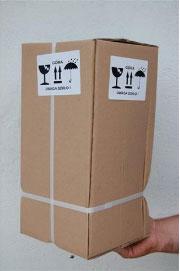 Zapakowana sadzonka gotowa do wysyłki